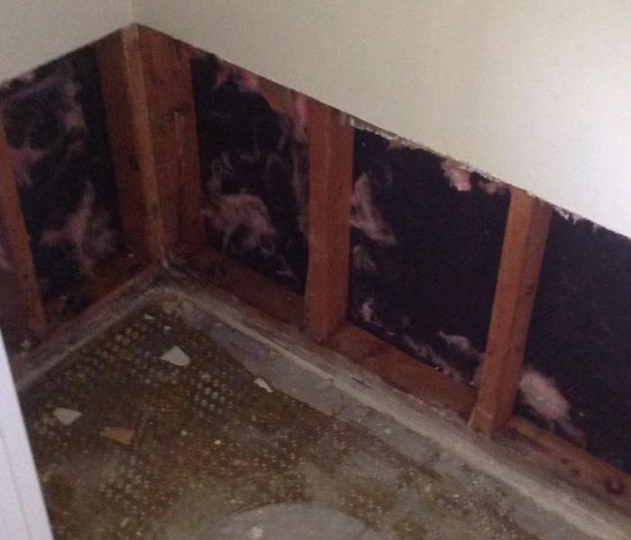 Minor mold removal in Highland Haven, TX. After